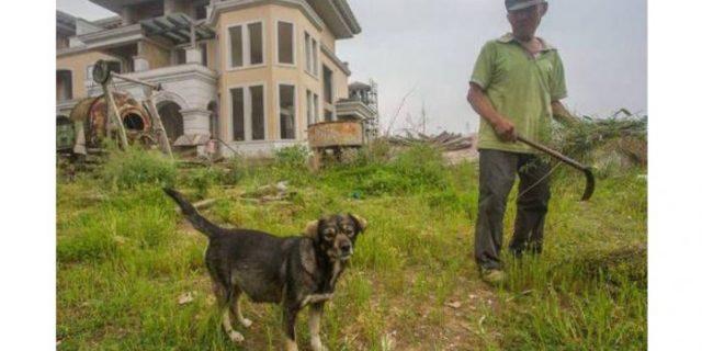 Kota Hantu di China,Di Jaga Oleh Pria 75 Tahun dan Anjingnya
