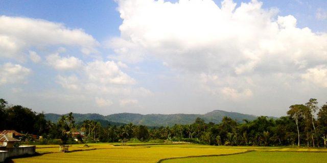 KPK dampingi Solok Selatan susun APBD